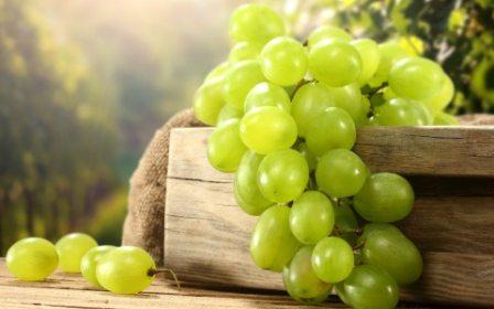 Come si fa la cura dell'Uva